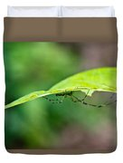 Long Leg Spider Duvet Cover