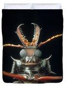 Longhorn Beetle Macrodontia Cervicornis Duvet Cover