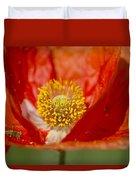 Longhorned Grasshopper Nymph On Orange Poppy Duvet Cover