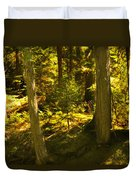 Lord Of The Rings Glacier National Park Duvet Cover