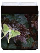 Luna Moth 1 Duvet Cover