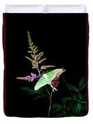 Luna Moth On Astilby Flower Duvet Cover