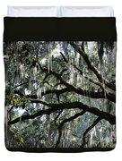 Magnolia Meets Live Oak Duvet Cover