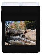 maine 29 Baxter State Park Trailside Stream Duvet Cover