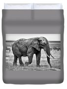 Majestic African Elephant Duvet Cover