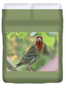 Male House Finch Duvet Cover