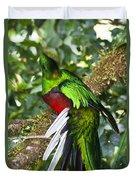 Male Resplendent Quetzal Duvet Cover