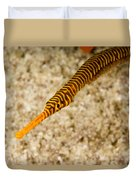 Male Yellow Banded Pipefish Carrying Duvet Cover