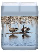 Mallard Ducks Sitting On A Sandbar  Duvet Cover