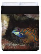 Mandarinfish Sheltering Amongst Rocks Duvet Cover
