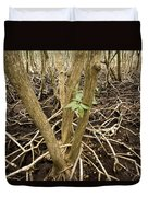 Mangrove Forest With Red Mangrove Duvet Cover