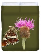 Map Butterfly Araschnia Levana Duvet Cover