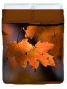 Maple Leaves In The Fall In Middlebury Duvet Cover