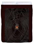 Marbled Orb Weaver Spider Duvet Cover