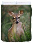Marsh Deer Blastocerus Dichotomus Duvet Cover