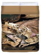 Marsupial Frog Gastrotheca Ovifera Duvet Cover