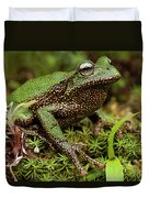 Marsupial Frog Gastrotheca Sp, A Newly Duvet Cover