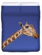 Masai Giraffe, Serengeti, Africa Duvet Cover