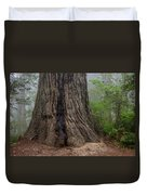 Massive Redwood And Fog Duvet Cover
