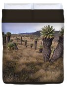 Meadows And Groundsel Trees, Mt Duvet Cover
