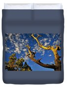 Mercy Duvet Cover