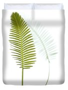 Mexican Cycad Leaf Mexico Duvet Cover