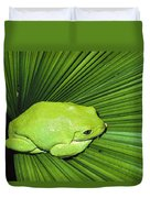 Mexican Giant Tree Frog Pachymedusa Duvet Cover