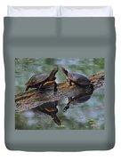 Midland Painted Turtles Duvet Cover