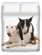 Miniature Bull Terrier Bitch, Lily Duvet Cover by Mark Taylor