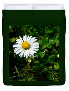 Miniature Daisy In The Grass Duvet Cover