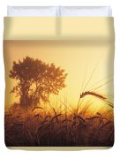 Mist In A Barley Field At Sunset Duvet Cover