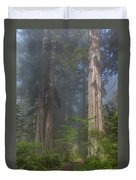 Mists Rising From Lady Bird Johnson Grove Duvet Cover