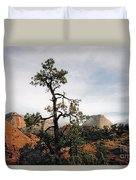 Misty Morning In Zion Canyon Duvet Cover