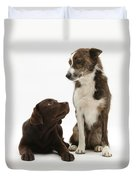 Mixed Breed And Chocolate Lab Duvet Cover
