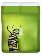 Monarch Caterpillar  Duvet Cover