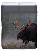 Moose, Algonquin Provincial Park Duvet Cover