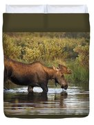 Moose Drinking In A Pond, Tombstone Duvet Cover