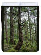 More Island Tree Art Duvet Cover