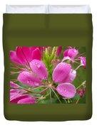 Morning Dew On Pink Cleome Duvet Cover