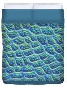 Moss Cells Duvet Cover