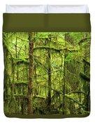 Moss-covered Trees Duvet Cover