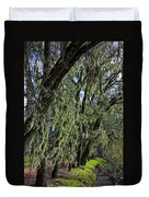 Moss Covered Trees Duvet Cover