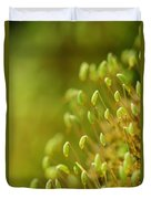 Moss With Capsules Duvet Cover