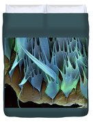 Moth Wing Scales Sem Duvet Cover
