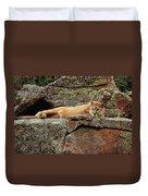 Mountain Lion Puma Concolor Lounging Duvet Cover by Gerry Ellis