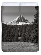 Mountain Peak Above The Tree Line Duvet Cover