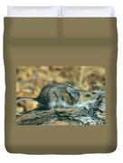 Mouse On A Log Duvet Cover