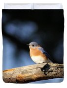 Mr. Bluebird Duvet Cover