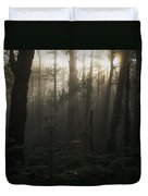 Mt. Hood National Forest Near Larch Duvet Cover