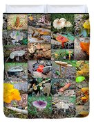 Mushroom Planet - Montgomery County Pa Duvet Cover